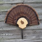 Single-Fan-Beard-Red-Oak-35-lg-0006