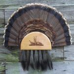 Turkey-Fan-Beard-Combo-50-lg-0005